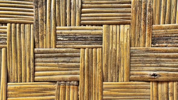 Bambus Material Der Zukunft
